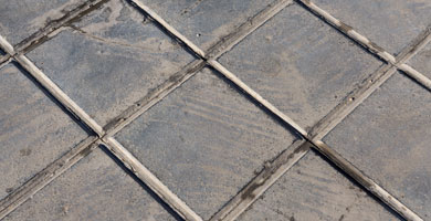 Pavers Mold
